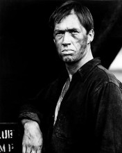 This is an image of Photograph & Poster of David Carradine 198733