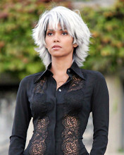 This is an image of Photograph & Poster of Halle Berry 289998