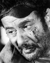 This is an image of Photograph & Poster of Eli Wallach 198821
