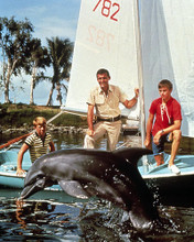 This is an image of Photograph & Poster of Flipper 289956