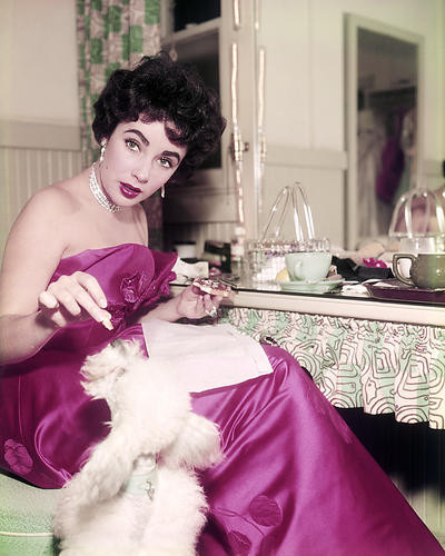 This is an image of Photograph & Poster of Elizabeth Taylor 290048
