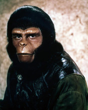 This is an image of Photograph & Poster of Roddy McDowall 290052