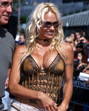 This is an image of Photograph & Poster of Pamela Anderson 290294