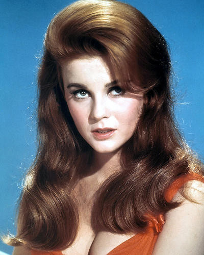 This is an image of Photograph & Poster of Ann-Margret 290938