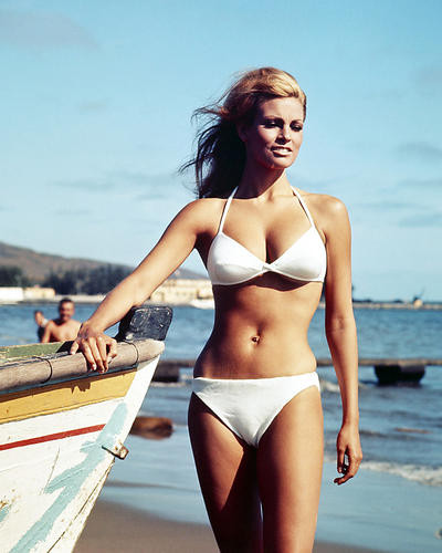 This is an image of Photograph & Poster of Raquel Welch 290351