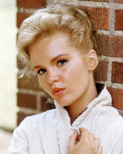 This is an image of Photograph & Poster of Tuesday Weld 290367