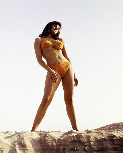 This is an image of Photograph & Poster of Raquel Welch 290392