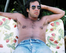 This is an image of Photograph & Poster of Chevy Chase 290396
