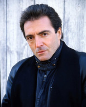 This is an image of Photograph & Poster of Armand Assante 290434