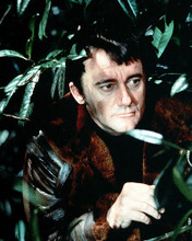 This is an image of Photograph & Poster of Robert Vaughn 291090