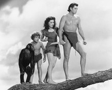 This is an image of 170771 Tarzan Photograph & Poster
