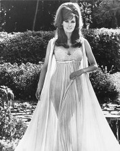 This is an image of 172517 Raquel Welch Photograph & Poster