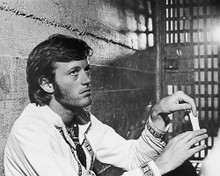 This is an image of 173157 Peter Fonda Photograph & Poster