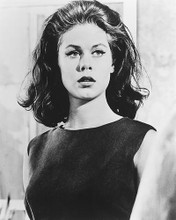 This is an image of 175773 Elizabeth Montgomery Photograph & Poster