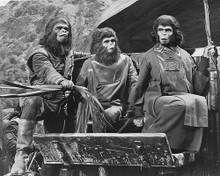 This is an image of 176386 Planet of the Apes Photograph & Poster