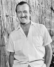 This is an image of 178319 David Niven Photograph & Poster
