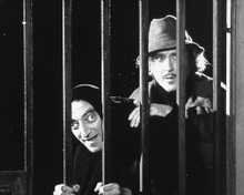 This is an image of 178361 Young Frankenstein Photograph & Poster