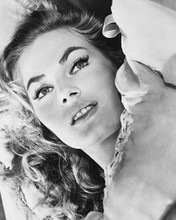 This is an image of 179531 Anita Ekberg Photograph & Poster