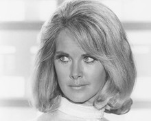 This is an image of 180311 Wanda Ventham Photograph & Poster