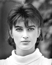 This is an image of 191601 Amanda Pays Photograph & Poster