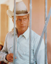 This is an image of 238503 Paul Newman Photograph & Poster