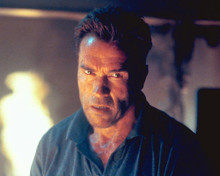This is an image of 250862 Arnold Schwarzenegger Photograph & Poster