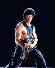 This is an image of 253908 Sylvester Stallone Photograph & Poster