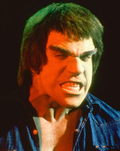 This is an image of 255266 Lou Ferrigno Photograph & Poster