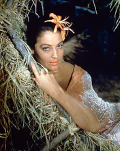 This is an image of 258539 Ava Gardner Photograph & Poster