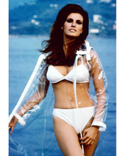 This is an image of 264910 Raquel Welch Photograph & Poster