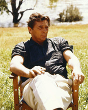 This is an image of 265059 Robert Mitchum Photograph & Poster