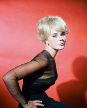 This is an image of 265707 Elke Sommer Photograph & Poster