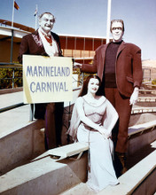 This is an image of 266462 The Munsters Photograph & Poster