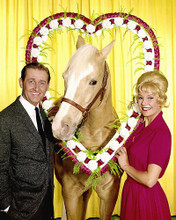 This is an image of 267455 Mr.Ed Photograph & Poster