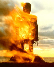 This is an image of 269351 The Wicker Man Photograph & Poster