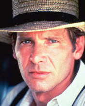 This is an image of 269630 Harrison Ford Photograph & Poster