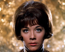 This is an image of 280740 Linda Thorson Photograph & Poster