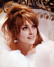 This is an image of 280791 Sharon Tate