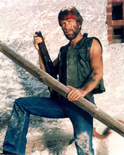 This is an image of 281266 Chuck Norris Photograph & Poster