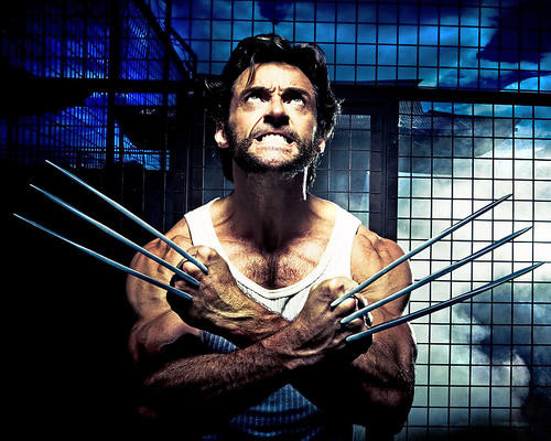 This is an image of 281463 Hugh Jackman Photograph & Poster