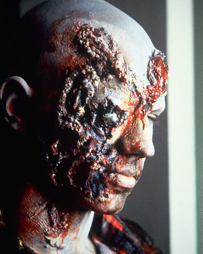 This is an image of 282605 Dawn of the Dead Photograph & Poster