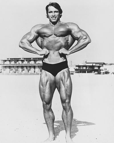 This is an image of 190456 Arnold Schwarzenegger Photograph & Poster