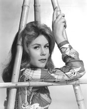 This is an image of 191217 Elizabeth Montgomery Photograph & Poster