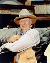 This is an image of 219948 Walter Brennan Photograph & Poster