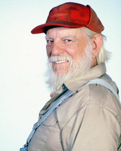 This is an image of 248622 Denver Pyle Photograph & Poster