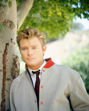 This is an image of 262365 Michael Parks Photograph & Poster