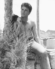This is an image of 175146 Ricky Nelson Photograph & Poster