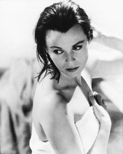 This is an image of 175336 Claire Bloom Photograph & Poster
