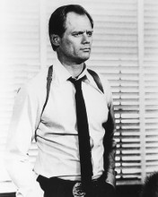 This is an image of 186202 Fred Dryer Photograph & Poster