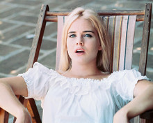 This is an image of 245604 Sue Lyon Photograph & Poster